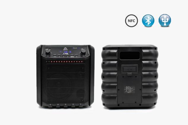 T-60B-1 Bluetooth PA Speakers System