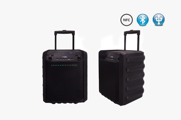 T-80B Bluetooth PA Speakers System with Wheels